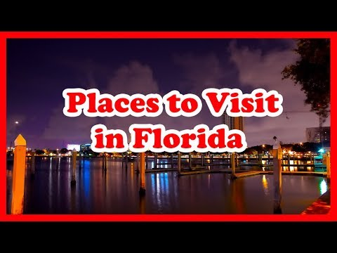 5 Best Places to Visit in Florida | US Travel Guide
