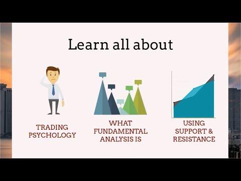 ALPHA Programme   Learn To Trade The Financial Markets - Bizintra
