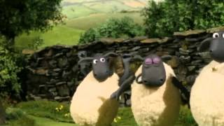 Shaun The Sheep Full Episodes In English 2014 Shaun the Sheep 73 Pig Swill Fly