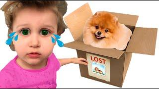 Eve lost the DOG | Pretend Play | Super Eva