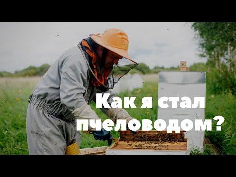 Как я стал пчеловодом. Карника, бакфаст и старт в пчеловодстве.