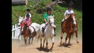 Fox Hill Farm Summer Horse Camp!
