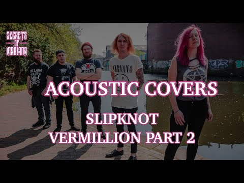 Secrets of Mariana - Vermillion Part 2 (Acoustic Cover)