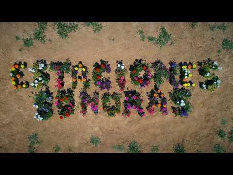 Llega Estaciones Sonoras Primavera 2019