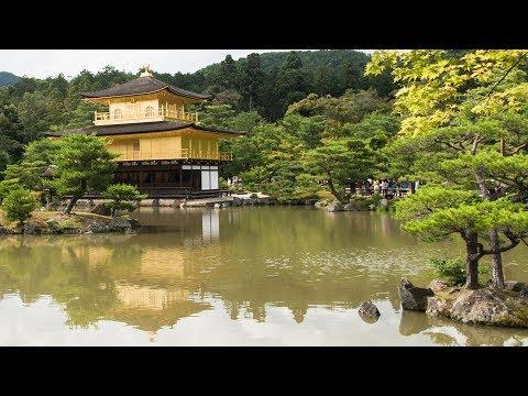 Kinkaku-ji Gold Temple in Kyoto & Winning Supreme LV Raffle! Japan Day Four & Five