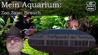 Zoo Zajac Besuch | Mein Aquarium 3