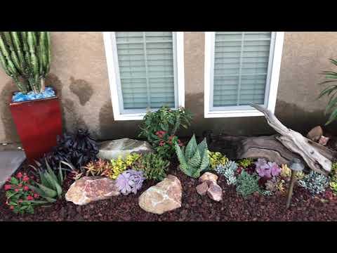 Succulent Garden Installation Grand Reveal in Lakeside, Ca