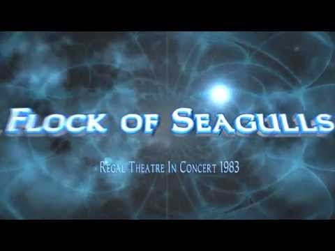 A Flock of Seagulls:  Regal Theatre  1983+