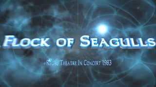 A Flock of Seagulls:  Regal Theatre Live 1983+