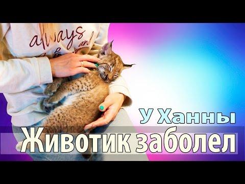 Ольга, 39 лет, Россия, Владивосток, 1 фото, познакомится с