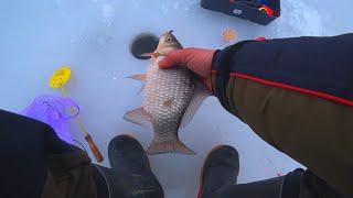 Зимняя рыбалка 15 кг ЗА 2 ЧАСА рыбалка на карася 2020