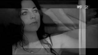 Amy Lee You