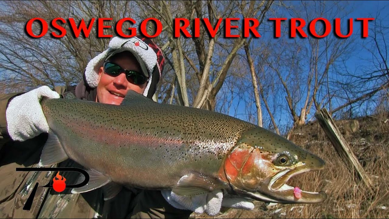 Oswego river steelhead fishing youtube for Oswego river fishing report