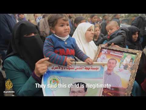 Sperm Smugglers in Palestine