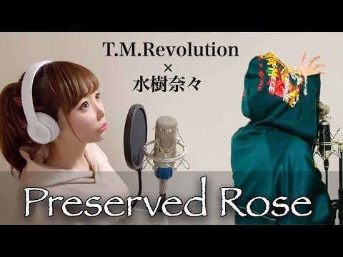 Preserved Roses/T.M.Revolution×水樹奈々【monogataru×ひろみちゃんねる】-cover/フル歌詞付き(西川貴教/Mizuki Nana)歌ってみた