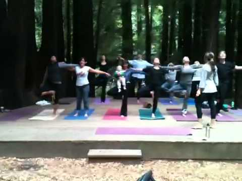 Outdoor Harmonia yoga class in Mill valley