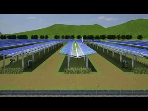 Discover Mandalika solar project in Indonesia