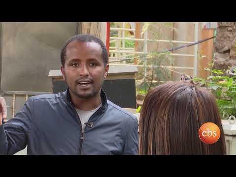 Semonun Addis: Traffic Lights in Addis Ababa
