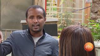 Traffic Lights in Addis Ababa - Semonun Addis | TV Show