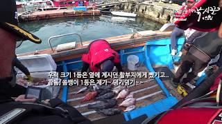 초보선상낚시꾼 #10  2018.04.21 참돔 타이라바낚시, 개우럭, 거대쏨뱅이는 뽀나스~, 통영태영호
