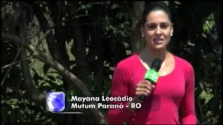 Matéria de Capa - Rondônia (parte 1)
