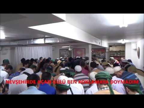 Muhammede Muhammede Canlar kurban Can Ahmede
