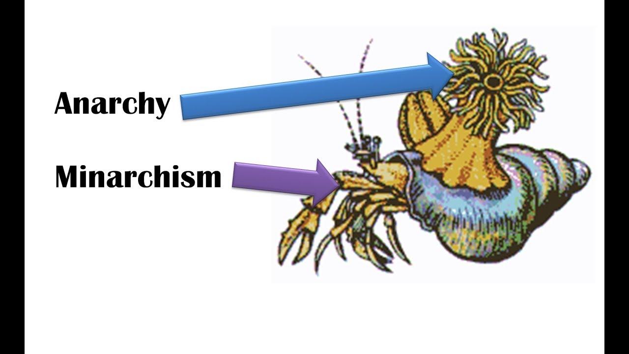 Ancap & Minarchism: a Synergy? by Political Ferret