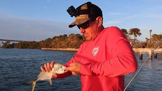 JACK CREVALLE - {Catch Clean Cook}