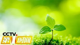 《第一时间》最高法:环境损害赔偿案司法解释发布 20190606 1/2 | Cctv财经