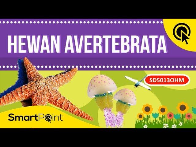 8 Penggolongan Hewan Avertebrata Smartpoint Sd5013ohm Youtube