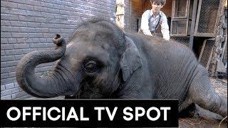 ZOO   Official TV Spot [HD]