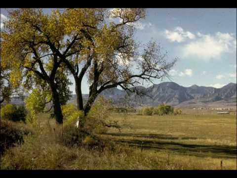 Marty Robbins - Cottonwood Tree