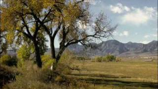 Marty Robbins - Cottonwood Tree