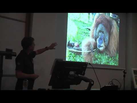 """Dr. Ian Singleton, SOCP Director - """"Protecting Sumatran orangutans"""""""