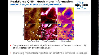 recent progress in afm and nanomedicine applications of force spectroscopy and peak force tapping
