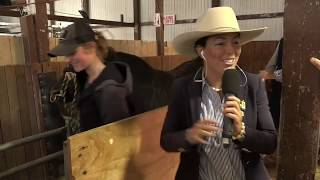 2019 Royal Show TV - Beef Cattle Weighing & Stalls Tour