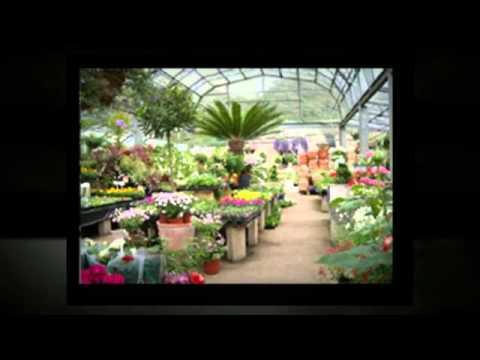 Walker Nursery Farms Inc Garden Center Near Jonesboro Ga