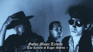 Gothic Music Tribute: Girls Under Glass (1988-2001)
