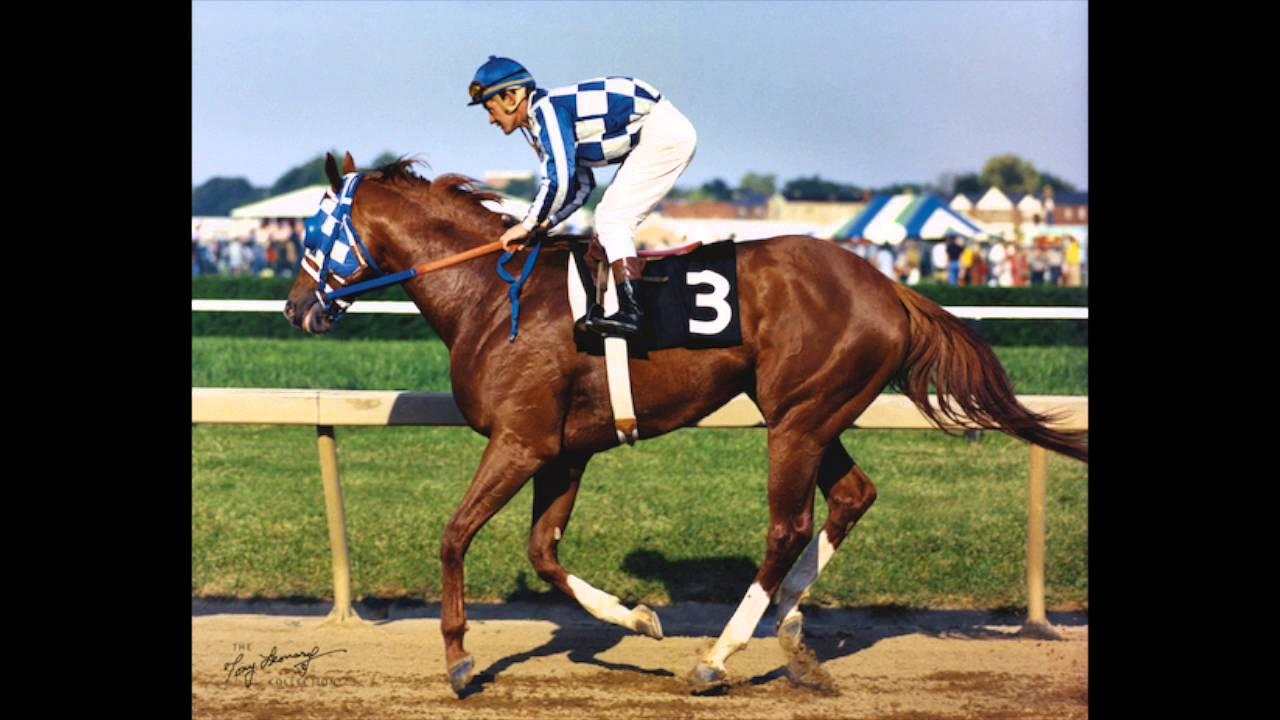 Race Horse Secretariat Triple Crown Winner 1973 Original Oil ...