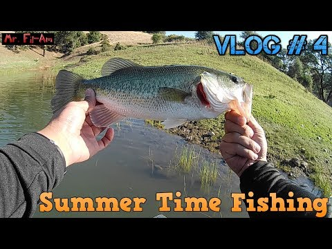Back In Lake Sonoma - Summer Bass Fishing