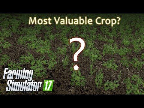 Farming Simulator 17 - Most Valuable Crop Award