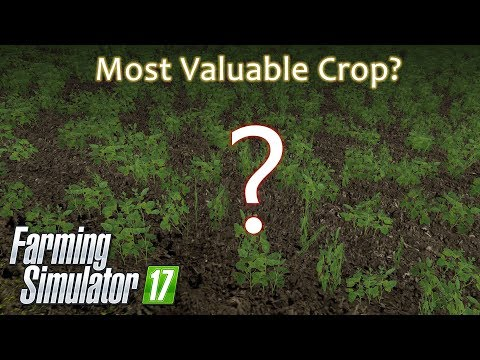 Farming Simulator 17 - Most Valuable Crop Award