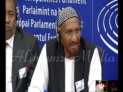 Press Conference:- Imam Alsadig Almahdi and the Sudan Call forces in Strasbourg