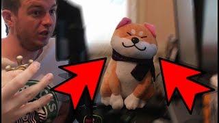 QU'EST-CE QU'IL SE PASSE ? - Vlog 13