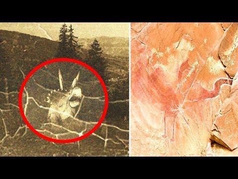 5 Alleged Prehistoric Animals & Dinosaurs Caught On Camera