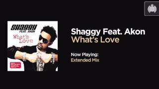 Shaggy Feat. Akon - What