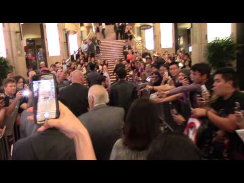 AVENGERS: AGE OF ULTRON Red Carpet Walk ( Stan Lee's Point of View )