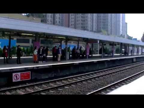 香港自由行-「沙田snoopy史諾比開心世界」港鐵九龍塘站往沙田站新城市廣場new-town-plaza