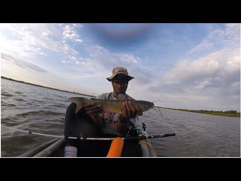 Kayak Catfishing Pt.2 THE BITE WAS ON!!!