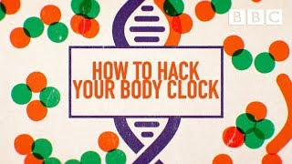 How to beat jet lag and master your body clock | LIFE HACKS - BBC